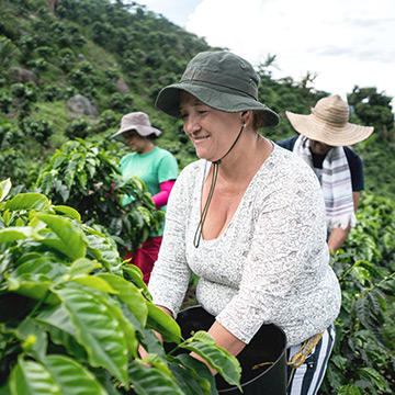woman-working-in-tea-plantation